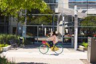 De campus van Google (foto: Google)